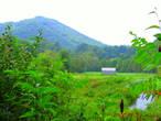 Virginia Creeper Trail Photo 1