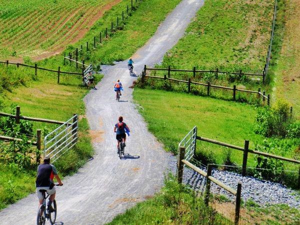 Family Bike Rentals Trend Home Design And Decor