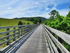 Virginia Creeper Trail Photo 5